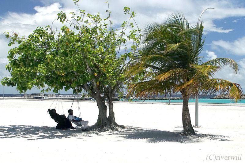 島の何気ない風景をのぞいてみよう