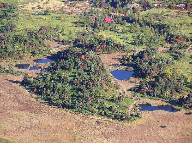 穴地獄もラムサール条約の保護対象!素晴らしき芳ケ平湿地群