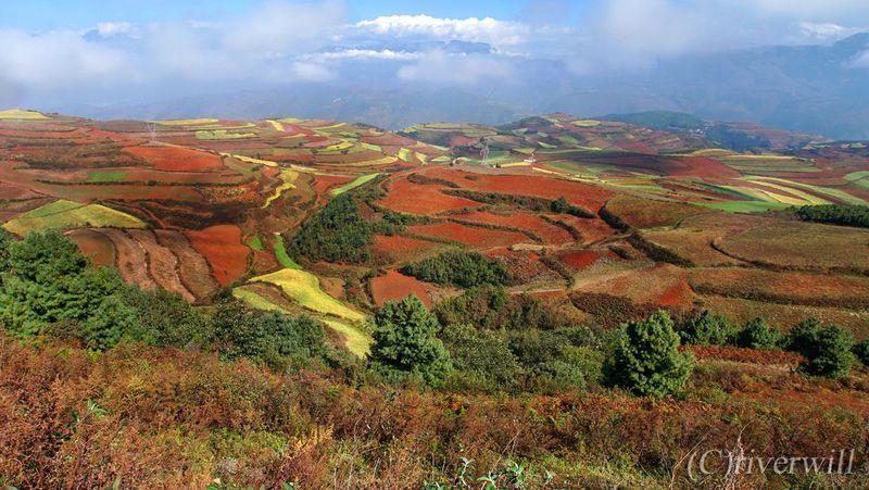 まるで天空のパレット!雲南省の隠れた秘境「東川紅土地」