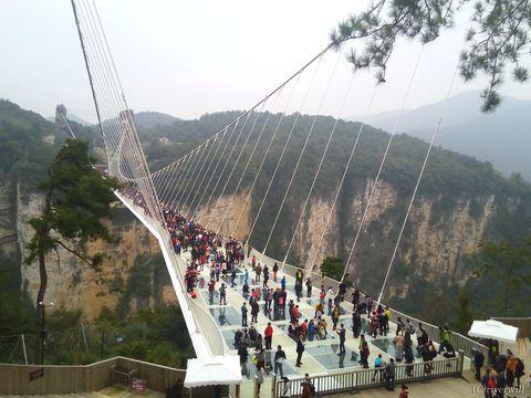 中国・世界最長ガラスの吊り橋で空中散歩