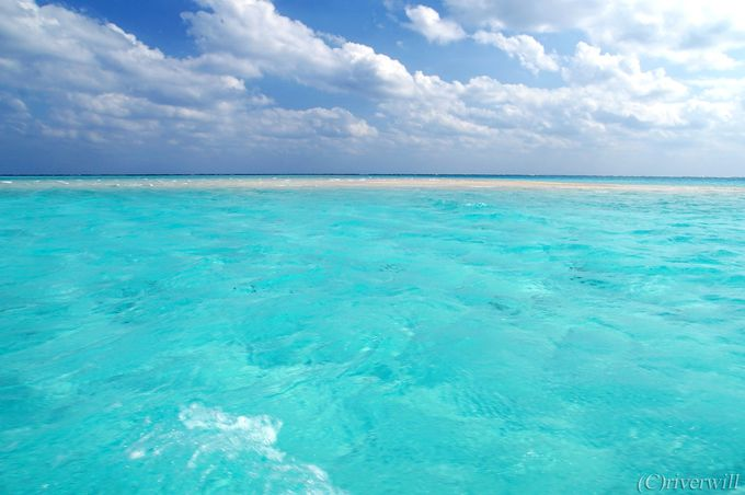人混み避けて「百合ヶ浜」を堪能するなら秋と冬!