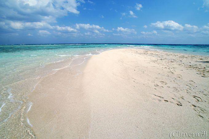 グラスボートでいざ幻の浜「百合ヶ浜」へ!