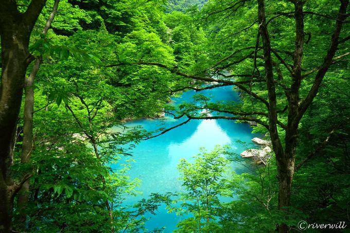熱い夏には天然クーラー!秋田「抱返り渓谷」で涼感ハイキング