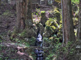 「石組」が表現する世界へ!日本庭園をより深く鑑賞する方法