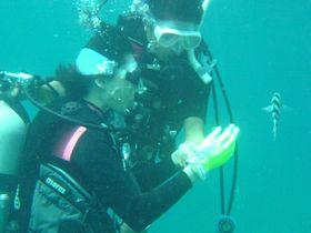 沖縄で体験ダイビング!同時にショップをチェックしてダイバーデビューを!