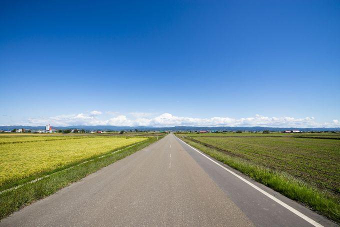北海道旅行の予算はどれくらい必要?