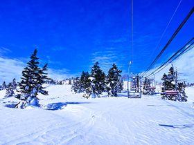 3月にバスで行く東京発格安スキーツアーの選び方