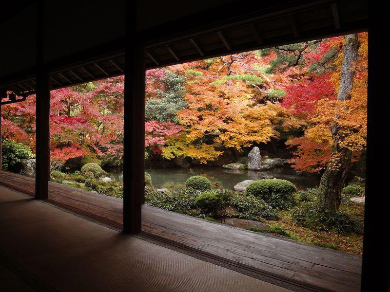 初心者必見!京都の名庭からはじめる日本庭園の基礎知識