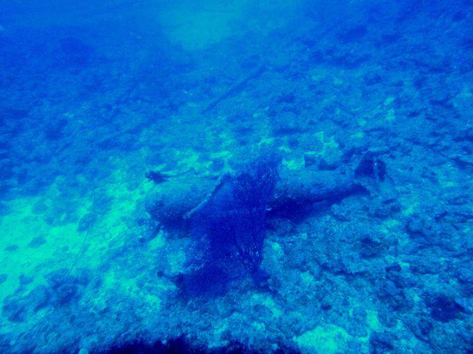 沈船の歴史について学ぶ(沖縄の海に沈む「駆逐艦エモンズ」とは…)