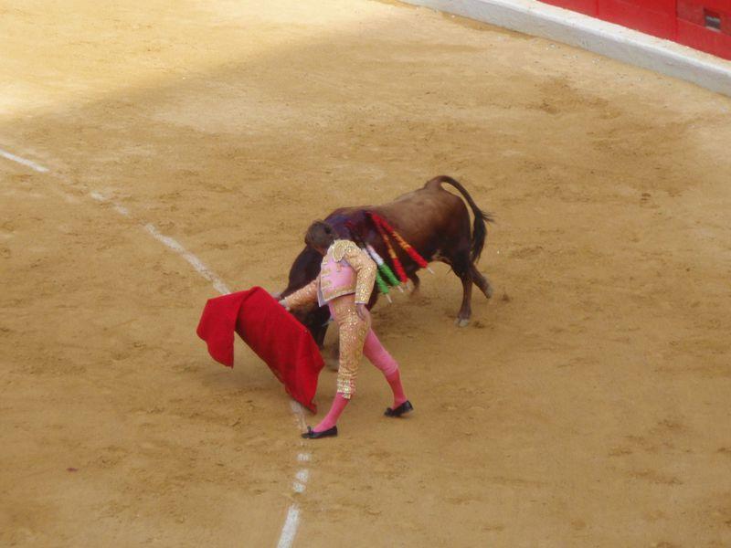 スペイン旅行はツアーがおすすめ! 気候や費用、観光地