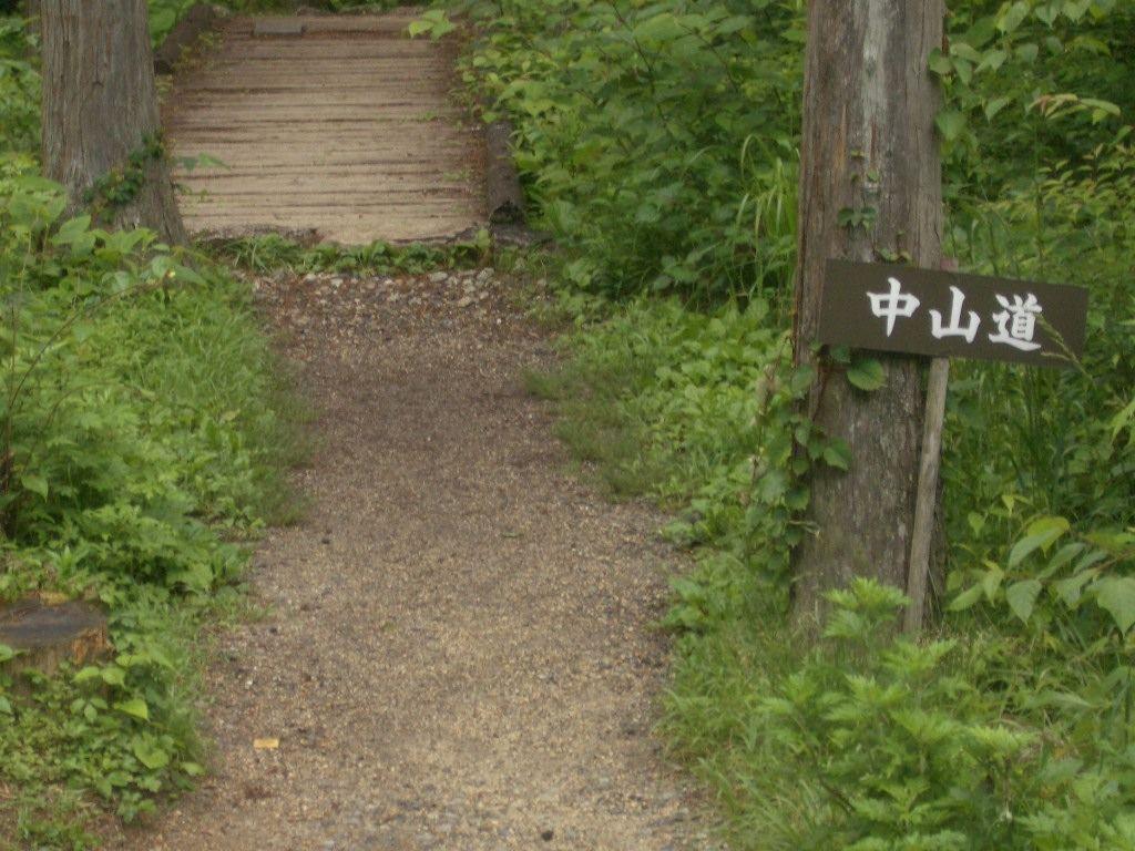 今日のお散歩コースは歴史街道「中山道」!