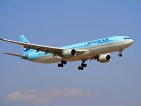 乗継に便利な大韓航空で世界へ!ビジネスクラスや機内食などサービスが抜群