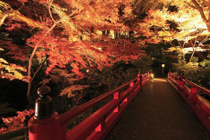 庭園を見ながら至福の時を過ごせる「ホテル椿山荘東京」