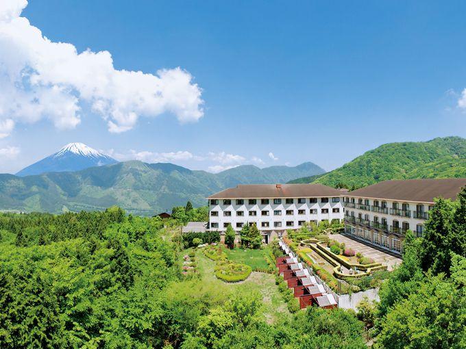日本一の名山を眺めて名湯に浸かる「仙石原温泉 ホテルグリーンプラザ箱根」