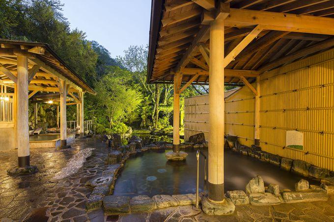 五感で自然を感じながら温泉に入れる「伏尾温泉 不死王閣」