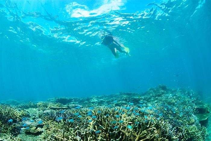 澄み切った青い海でマリンアクティビティを満喫できる「フサキリゾートヴィレッジ」