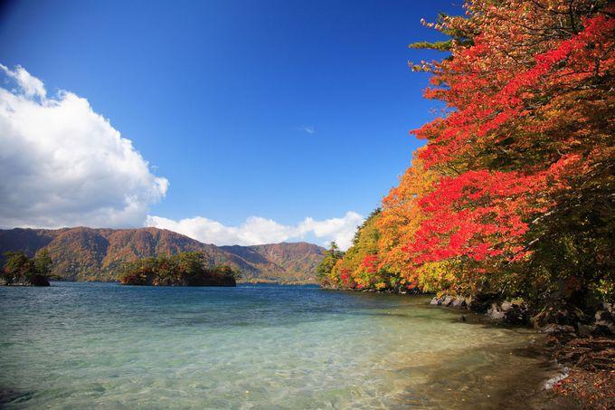 東北&秋田観光といったらここ!一度は訪れたい絶景定番観光スポット3選