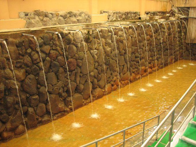 日本で唯一ミシュランに掲載された温泉!「ひょうたん温泉」