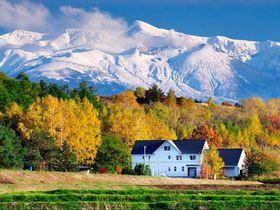 北海道で民泊しよう!Airbnbで予約できるおすすめ14選