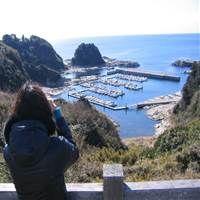 西藤 カオルのプロフィール写真