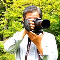 趣美人 MAKKYのプロフィール写真