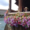 Hiroko Mのプロフィール写真