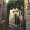 木蓮のプロフィール写真