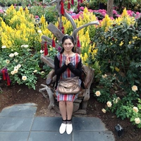Aya Hasegawaのプロフィール写真