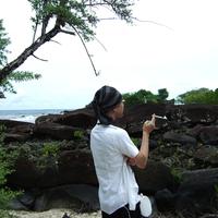 村田 彰のプロフィール写真