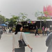 Yui Imaiのプロフィール写真